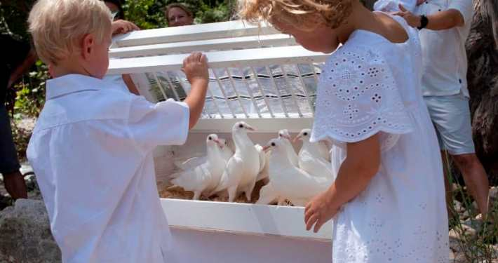 celebration-dove-release-blanco-river