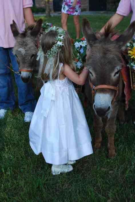 Flower-Girl-and-Donkeys-at-Old-Glory-Ranch
