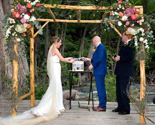 Arbor and Butterflies at the Wedding Deck
