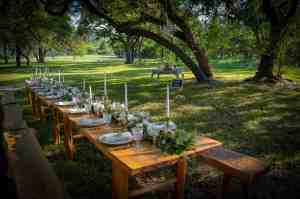 outdoor-reception-under-oak-trees-wimberley-wedding-venue-old-glory-ranch
