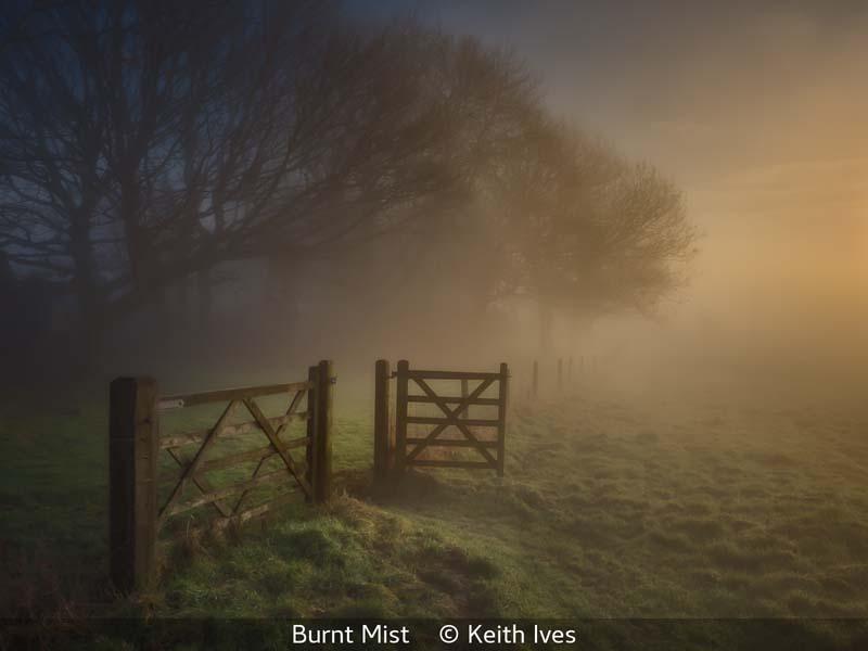 Keith Ives_Burnt Mist