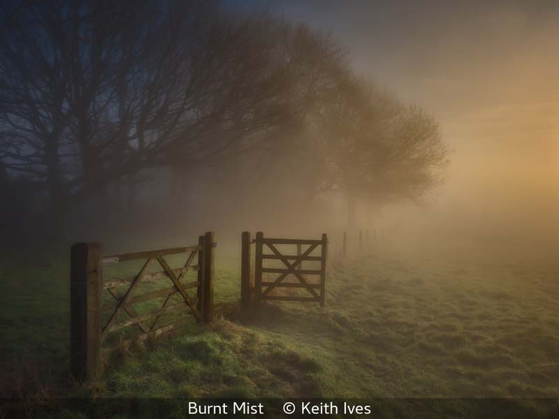 Keith Ives_Burnt Mist