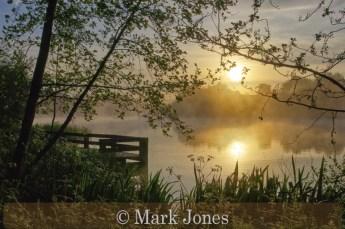 Commended_Mark Jones_Beauty of Solitude