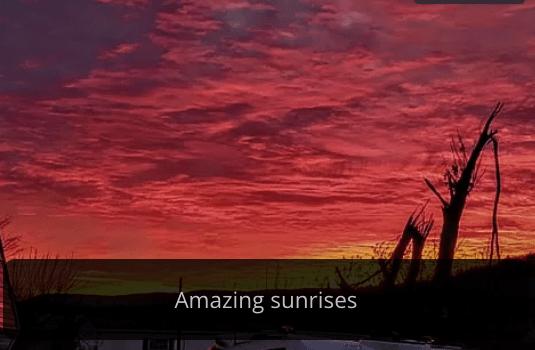 Screen Shot 2020-05-06 at 11.04.53 AM