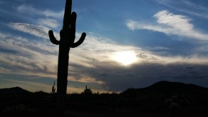 Hiking Apache Wash Trailhead. Saguaro, Phoenix. Arizona. Sunset