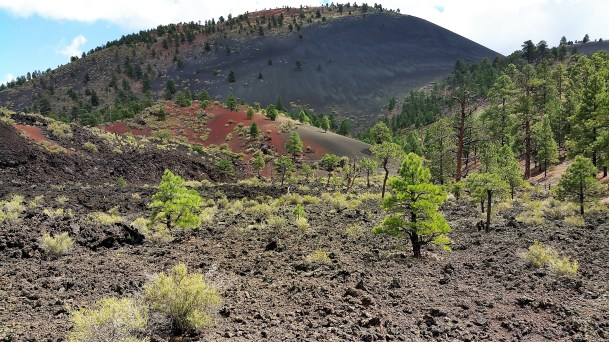 Lava Flow Trail Flagstaff Arizona