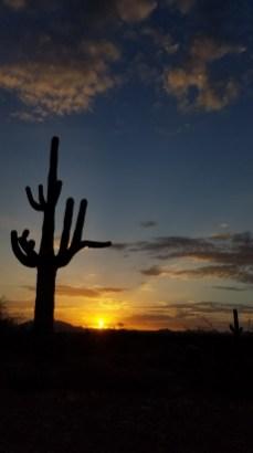Arizona Desert Sunrise Hiking Phoenix