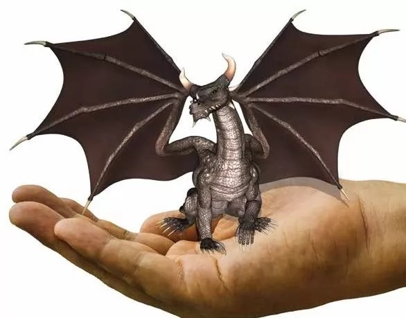 enter the hand dragon