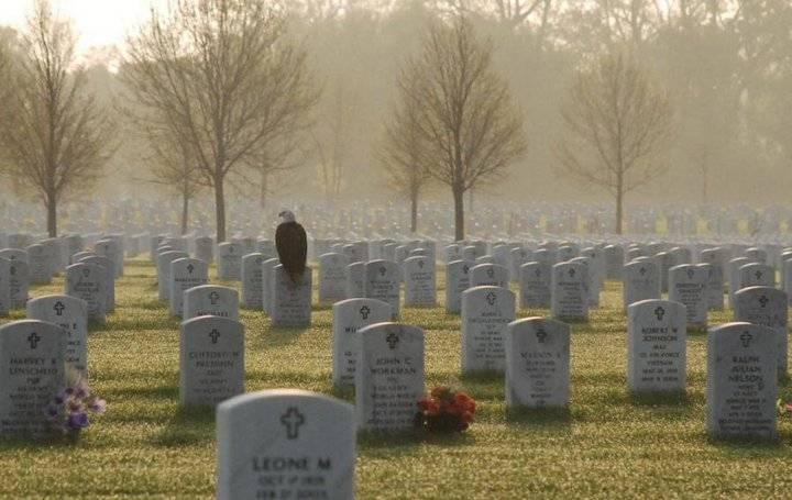 Eagle on headstone