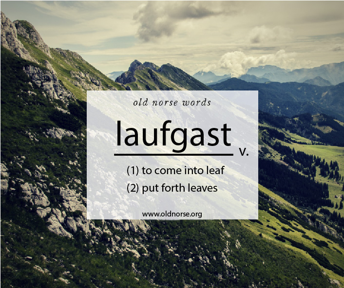 Old Norse Vocab Template_Word of the Day_laugfast.jpg