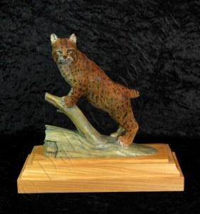 Bobcat standing with it's front paws on a dead log's branch