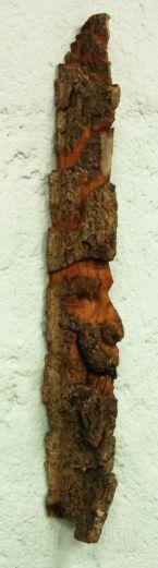 Cottonwood bark spiritface