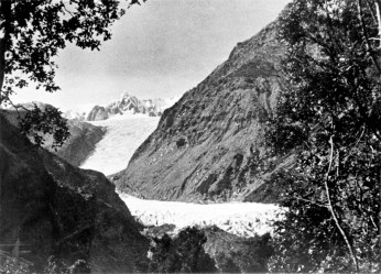 Fox Glacier, from Glacier Road
