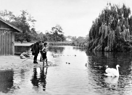 The Lake, Masterton