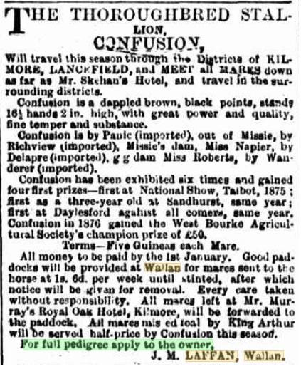 Confusion. Kilmore Free Press - 5th October, 1878