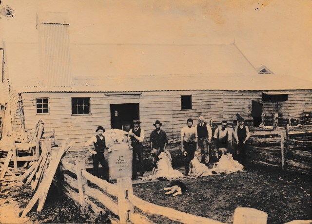 Shearing at Inverlochy in 1900