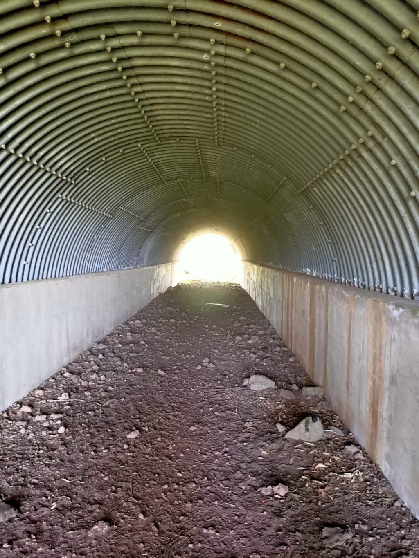 Cattle Tunnel - Bylands
