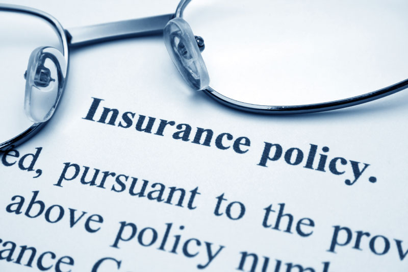 Optimal Insurance for Your Life