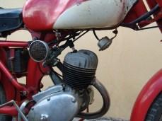 DSC05735