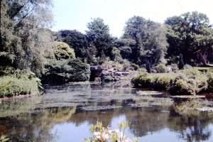 Norfolk - Norfolk-1968-15-Sandringham-Lake.jpg