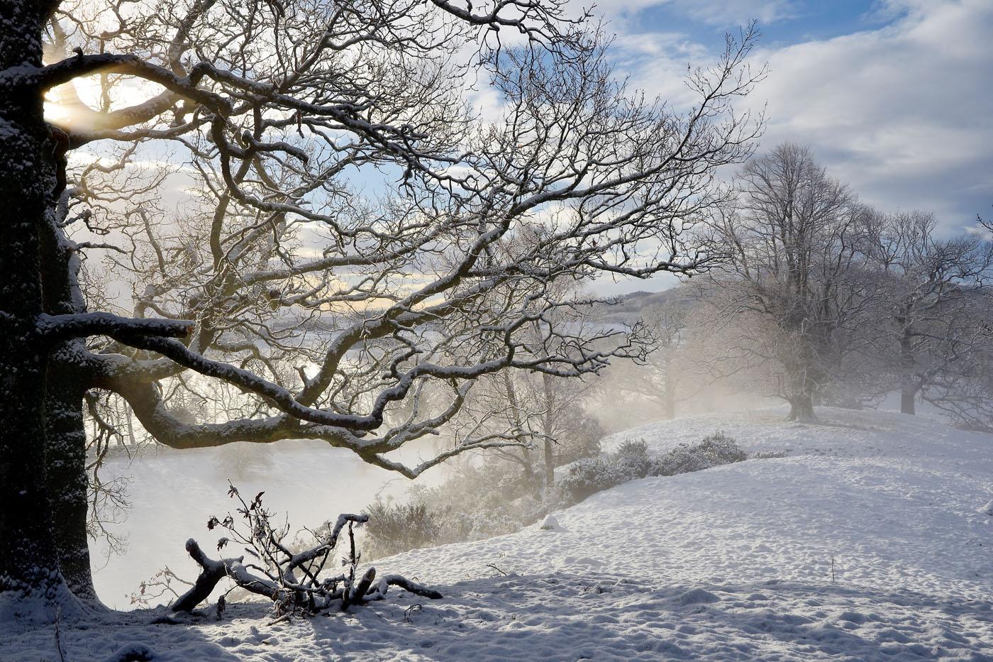 Laggan Hill, Crieff