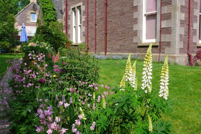 Old St. Michaels Garden, Crieff
