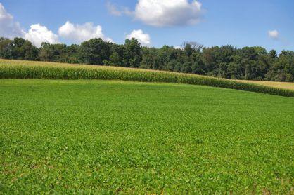 Pennsylvania Farmland, Lower Swatara Township, Middletown, Nissley Mansion