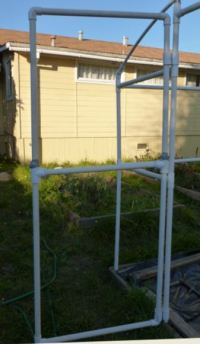 Building a PVC Greenhouse | Ramblings of a Rose Maniac ...