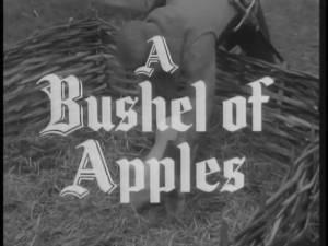 Robin Hood 142 – A Bushell of Apples