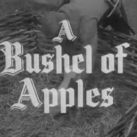 Robin Hood 142 - A Bushell of Apples