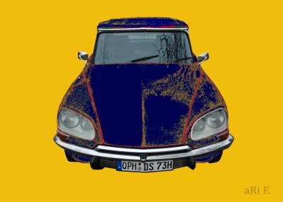 Citroen DS Pallas in yellow & blue mixed