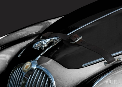 Jaguar Mark II Motorhaube in black & grey 1