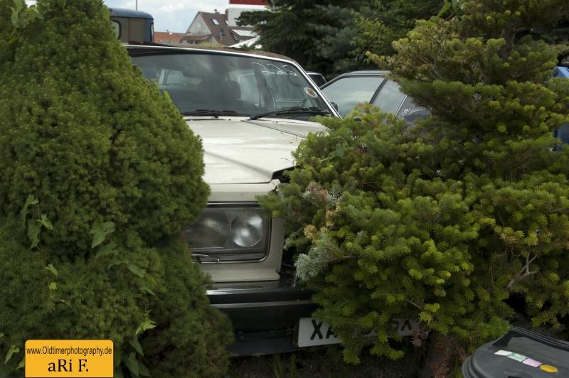 Rolls-Royce Silver Spur scrap heap