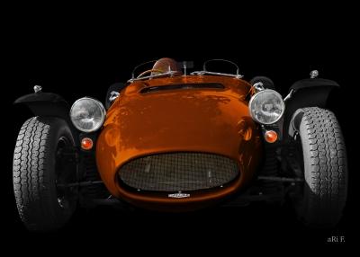 Ronart Jaguar W152 Poster in in brown