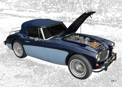 Austin-Healey 3000 Mk II new created for Art Cars by aRi F.