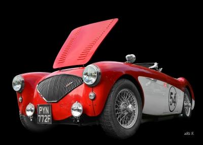 Austin-Healey 100M Le Mans Poster