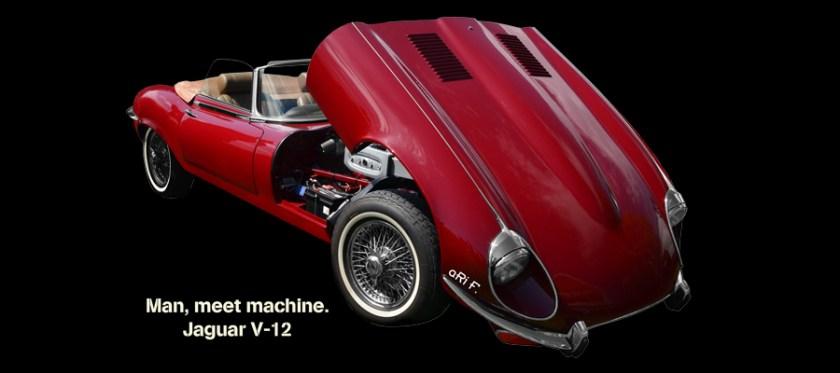 Jaguar E-Type Serie 3 Poster kaufen
