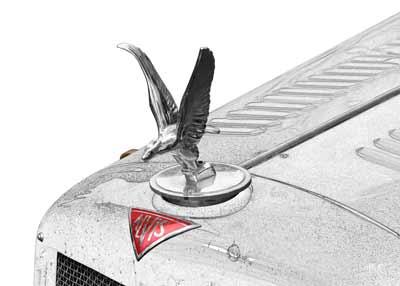 Alvis Speed 20 SA Silver Eagle in graphit