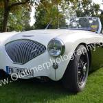 Austin-Healey 100M 1955-1956