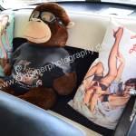 Dodge Coronet Lancer mit Erotic-Interieur auf der Rückbank