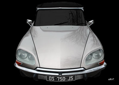 Citroen DS Pallas Poster in Originalfarbe