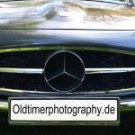 Mercedes-Benz 190 SL Kühlergrill
