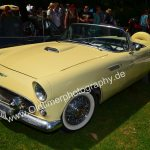 Ford Thunderbird T-Bird