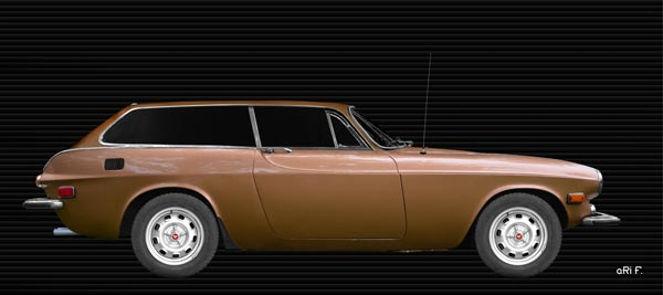 Volvo P1800 ES Poster in Originalfarbe