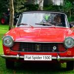 Fiat 1500 Spider Frontansicht 1963–1966