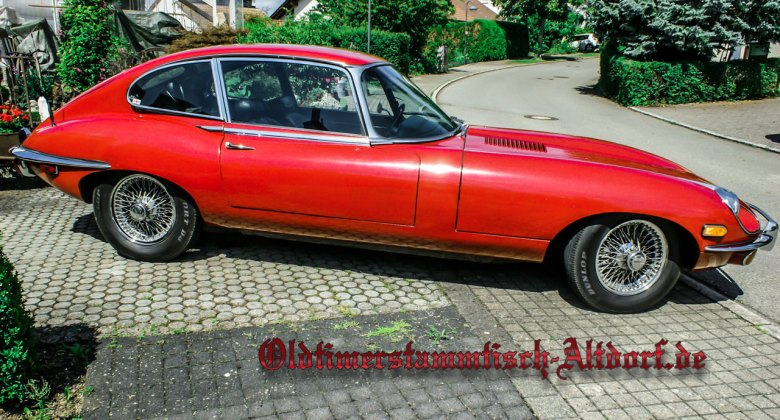 osa-jaguar-e-reinhard1