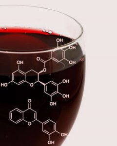 exploring-va-wine-wine-science