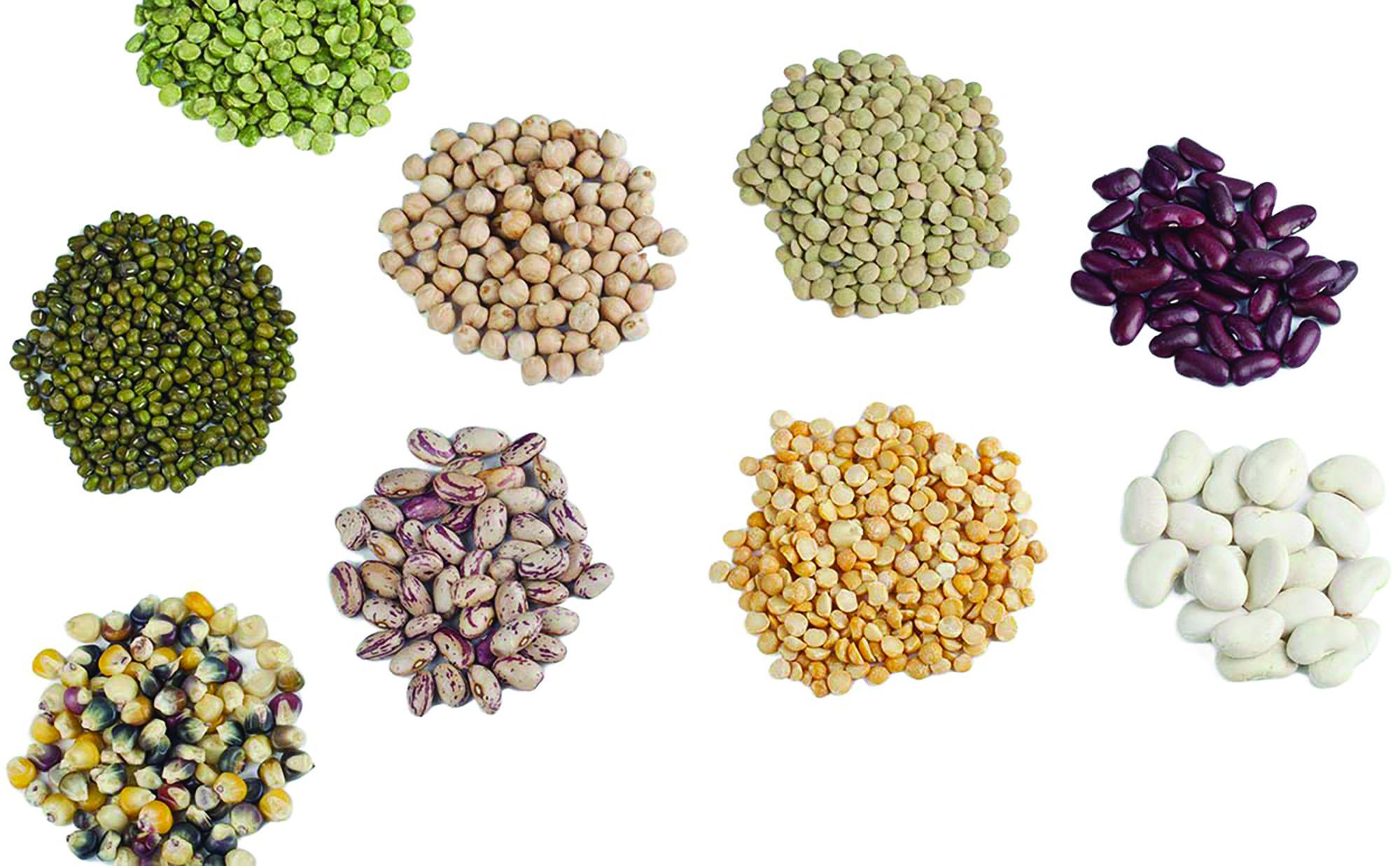 Save Those Seeds!!