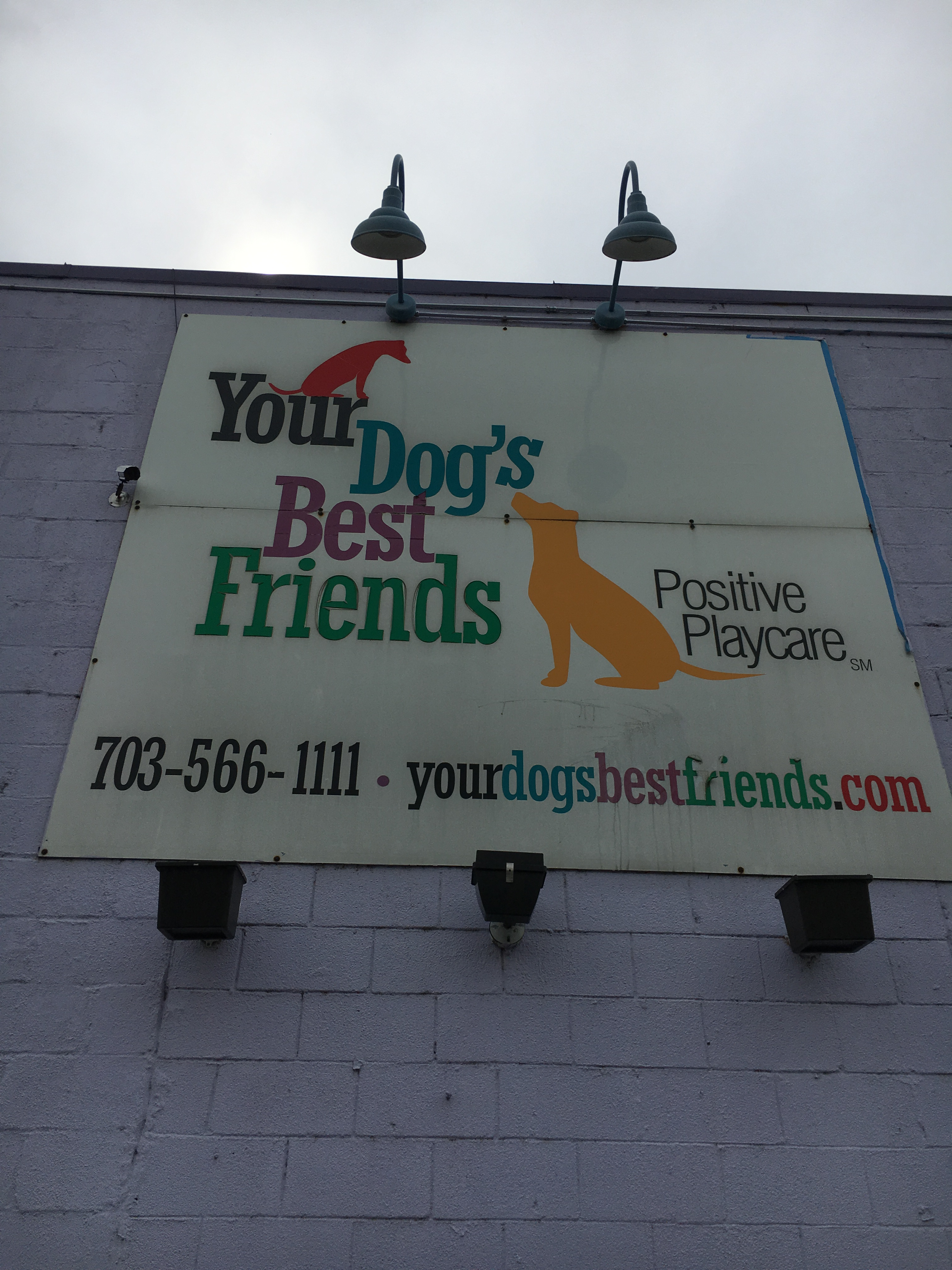 Your Dog's Home Away From Home!