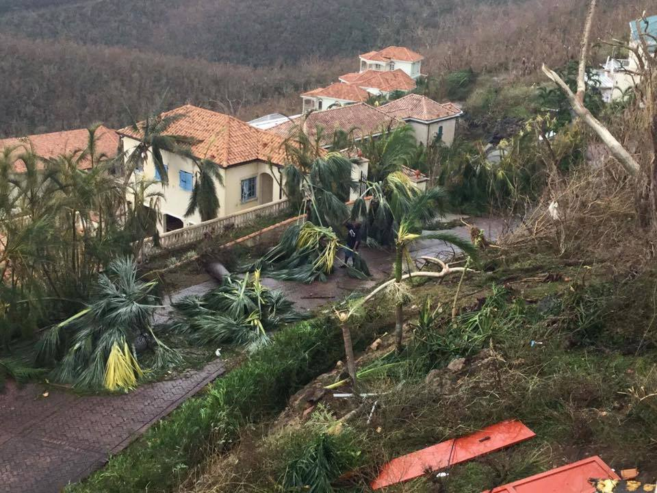 Caribbean Apocalypse and Recovery